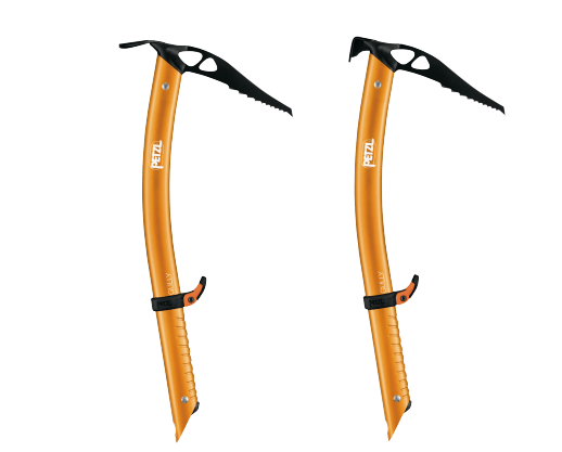 Petzl Gully