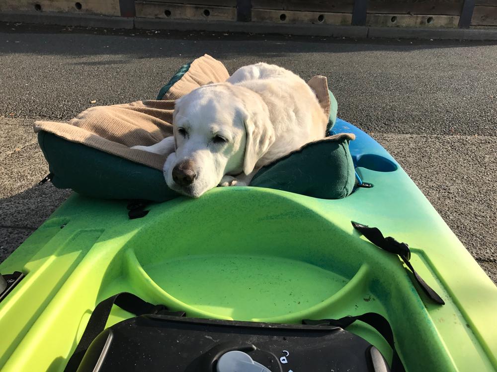 Lola Kayak