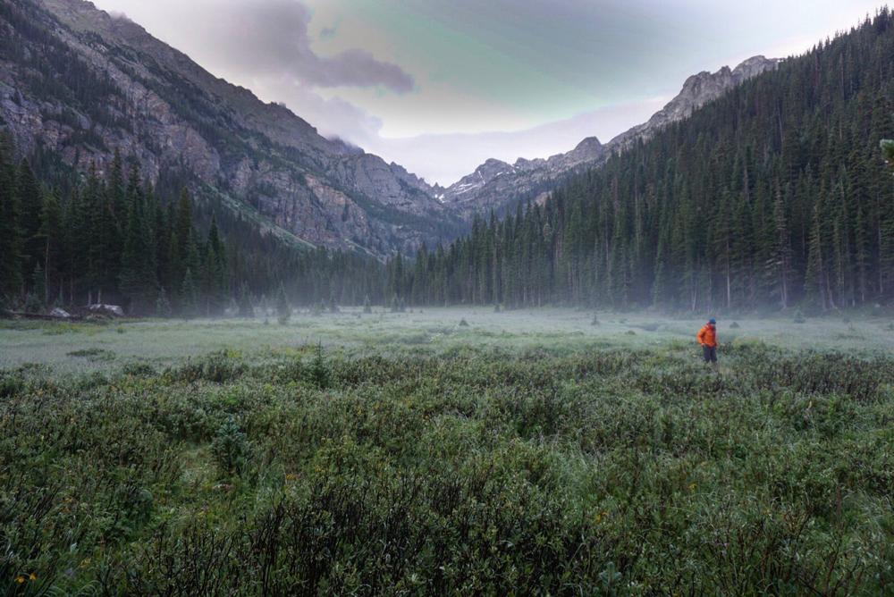 Thunderbolt Meadow