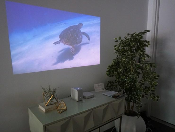 sony projector