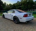 ford-mustang-cobra-svt-rear-gary