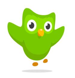 duolingo website logo owl