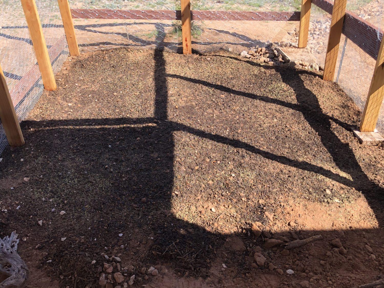 dirt with grass seeds
