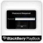 playbook password