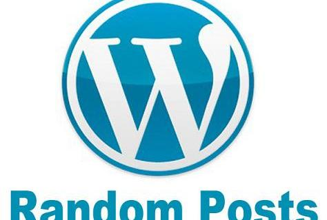 display wordpress random posts