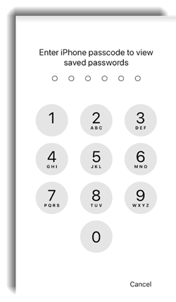 passcode for iPhone