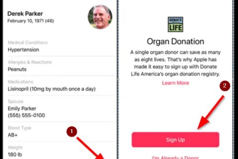 Organi Donor