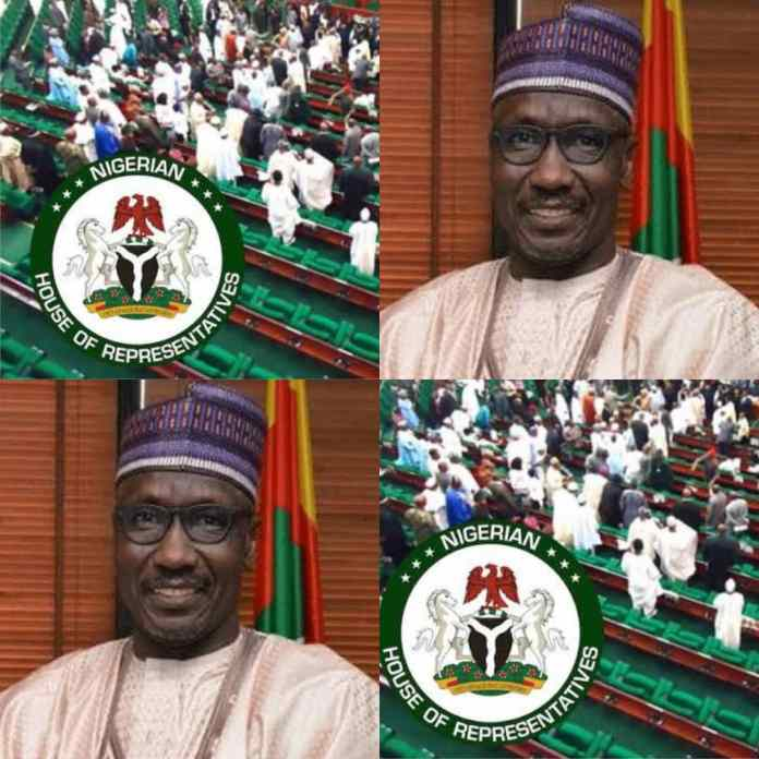 """House Of Representatives To Kyari: """"GMD You Have Made Our Day"""""""