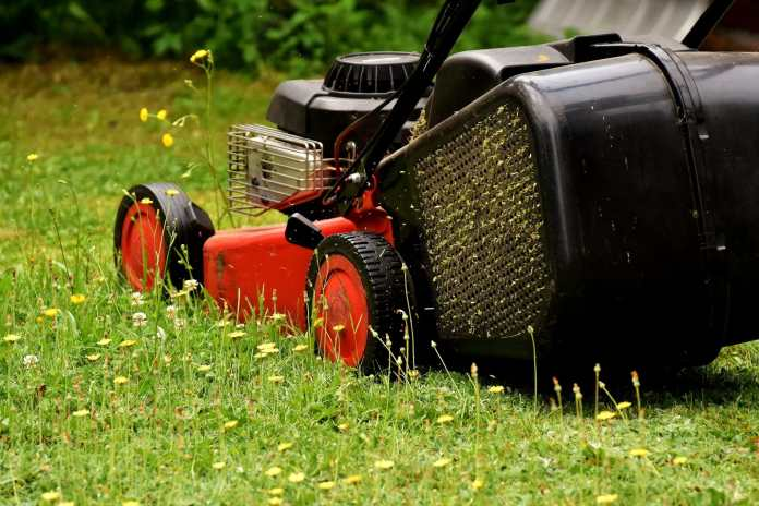 New 'Uber' for lawn care wants to show Atlanta lawns some love