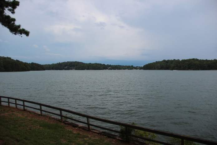 Rabies has been detected in animals near Lake Lanier