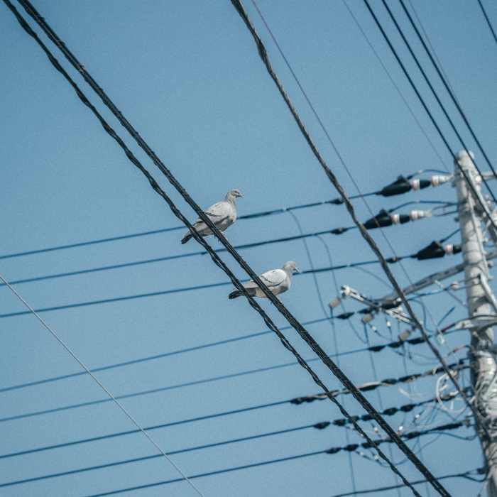 Georgia Power may pass COVID-19 safety costs on to customers