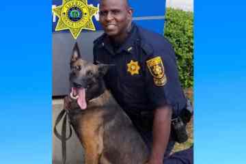 DeKalb police dog dies in pursuit of rape suspect