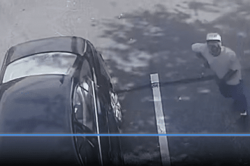 Savannah police search for persons of interest in cutting incident