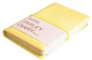 stocking stuffer ideas mini diary