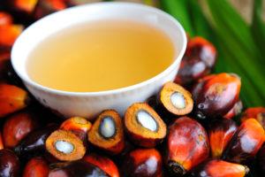 I frutti e l'olio di palma
