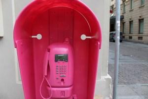 pantera rosa - TheGiornale.it