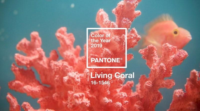 Living coral è il colore Pantone 2019 - thegiornale