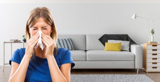 allergie casa