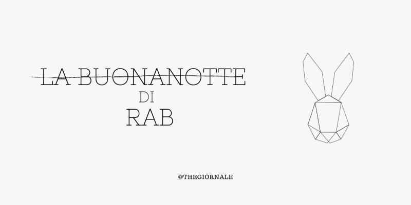 Gabbiani a Torino - LA BUONANOTTE di Rab