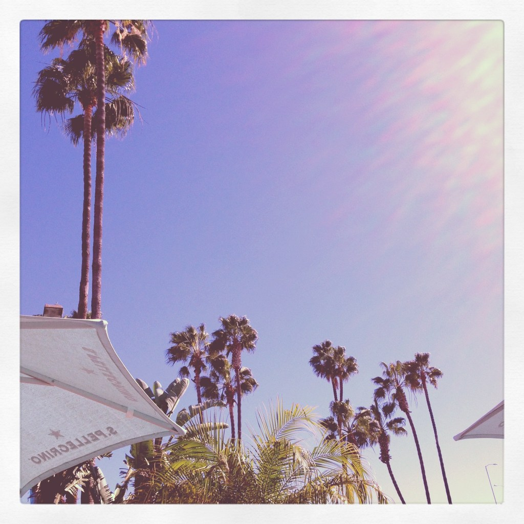 practical advice for travelling to the United States: California
