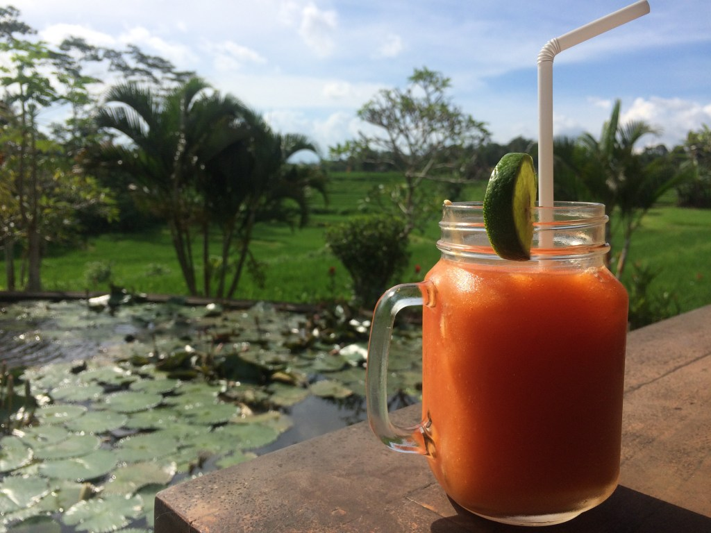 smoothie overlooking a lily pond and rice fields
