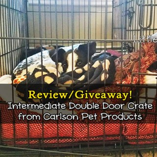 Carlson Pet Double Door Crate Giveaway
