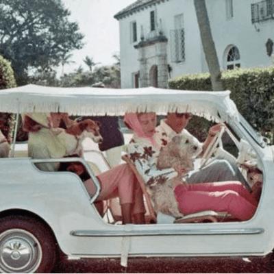 Vintage Palm Beach