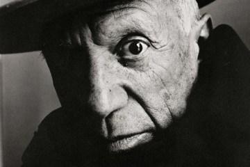 Picasso, Irving Penn- Centennial Main slide