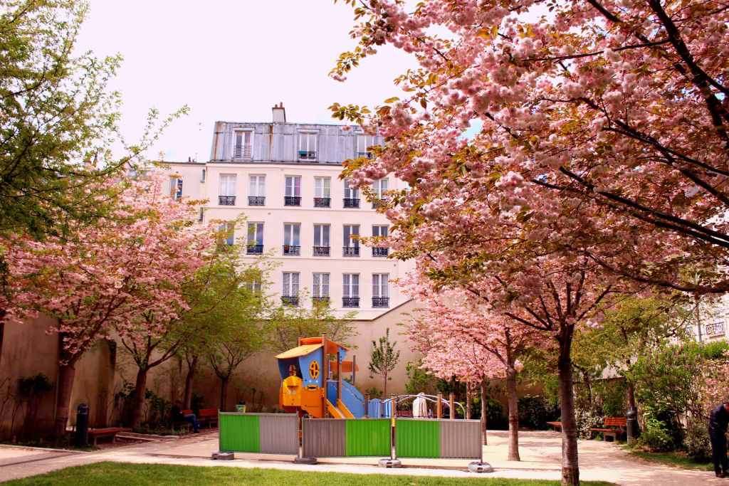 Cherry blossom Paris- Jardin Anne Frank| The Glittering Unknown