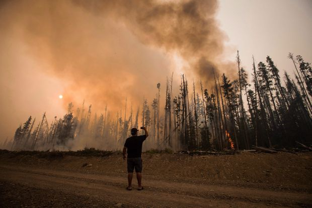 How do you make sense of the end of the world? The Uninhabitable Earth  paints a terrifying picture - The Globe and Mail