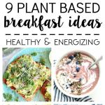 What I Ate 9 Plant Based Breakfast Ideas The Glowing Fridge