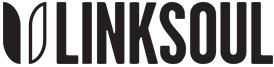 LinkSoul6