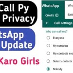 How to Disable Call Option In WhatsApp – The Gondal