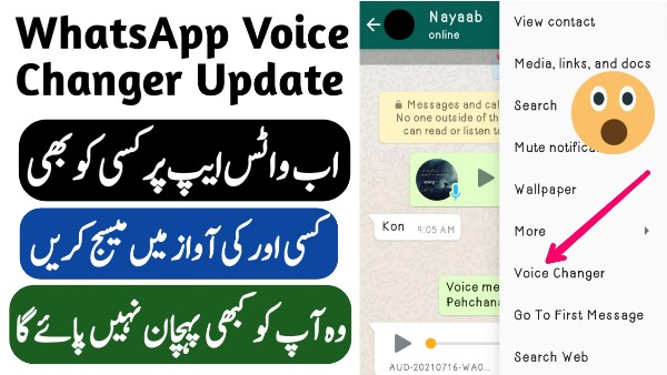 OG WhatsApp Download Apk For Android 2021 - Voice Changer For WhatsApp