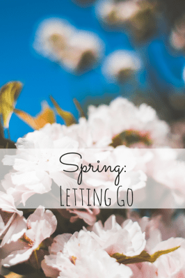 Spring: Letting Go