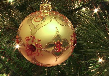 Christmas photo tips