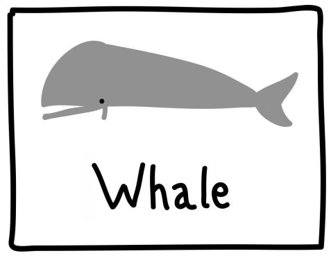 The Graphic Recorder - Visual Vocabulary - Ed Emberley Tribute - Whale