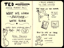 Sketchnotes Annie Murphy Paul On What We Learn Before We're Born