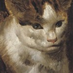 Study of a Cat Jacob Jordaens (1593-1678, Flemish)