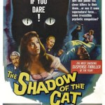 shadow of a cat - cats on film