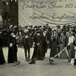 First Cat Show Crystal Palace London 1871