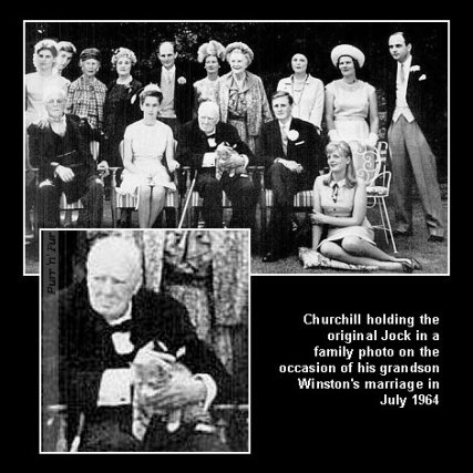 Winston Churchill Petting Cat