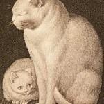 Gottfried Mind, White cat and kitten