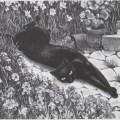 Agnes Tait, Felicity, 1936, cat art