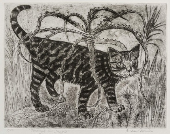 Through the Jungle, Richard Bawden