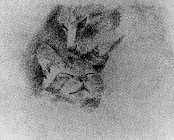 Remedios Varo The Cats Pituso and Zorrillo
