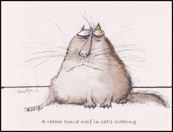 Timid Cat, Ronald Searle
