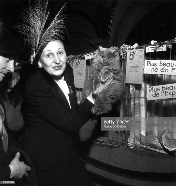 At the Cat Show, Robert Doisneau