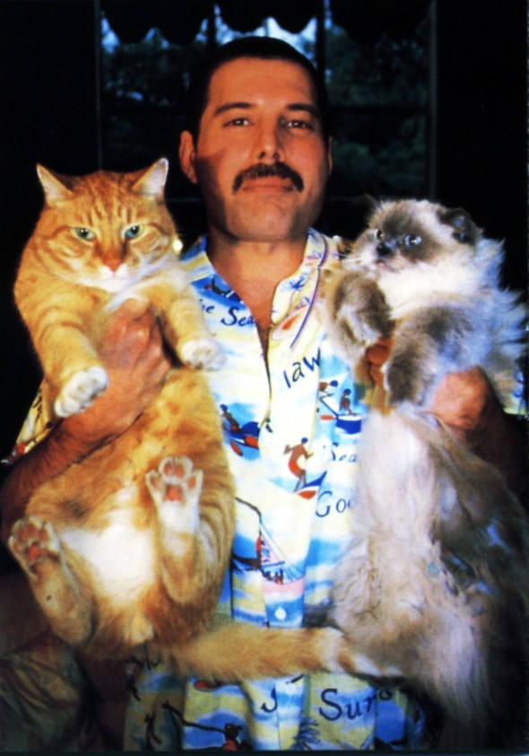Freddie Mercury with Oscar and Tiffany