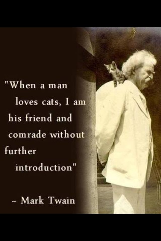 Cat Quotes By Author At The Great Cat In History Art And Literature